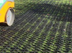 Grass Grid Reinforcement & Protection